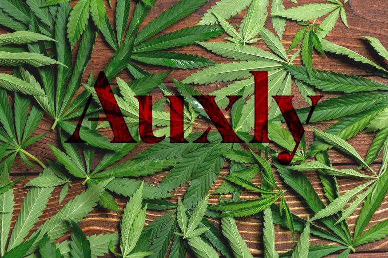 Auxly Cannabis